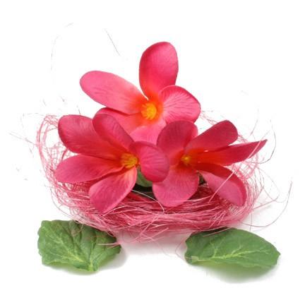bauer vapour xxv hot pink flower