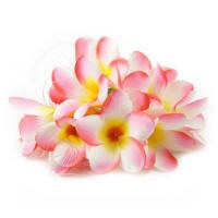 Wholesale Silk Frangipani Heads - Light Pink